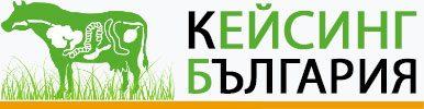 Casing Bulgaria Ltd